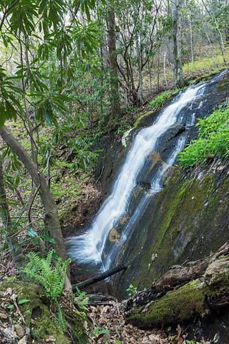 upper No Name Cove Falls - Pisgah National Forest