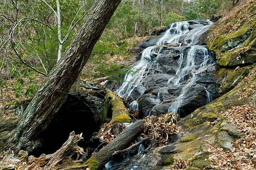 No Name Cove Falls - Pisgah National Forest