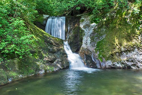 Kiesee Falls - Pisgah National Forest
