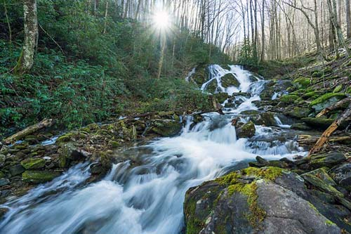 Little Bird Falls - Pisgah National Forest