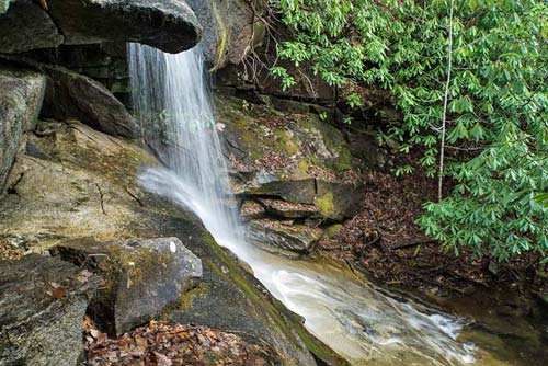 Pigeon Branch Falls - Pisgah National Forest   3-27-17