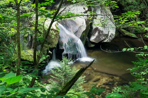 waterfall on Road Prong - Great Smoky Mountain National Park
