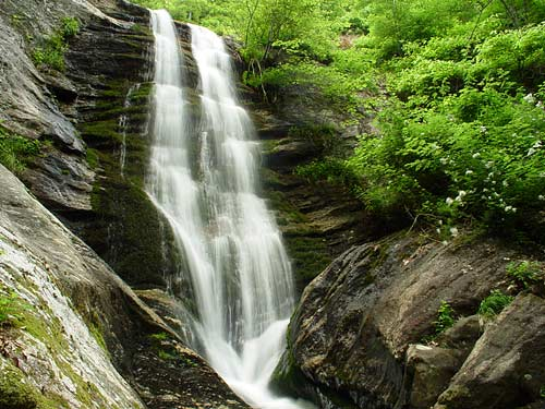 Toms Creek Falls - Pisgah National Forest