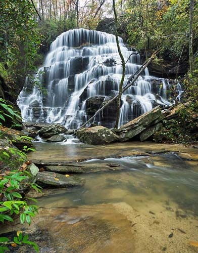 Yellow Branch Falls   11-3-2015